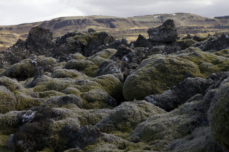 Iceland: Day 1 — Jen Reimer & Max Stein
